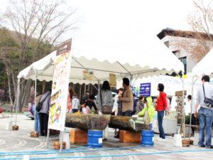 鳴沢つつじ祭り_1704_05